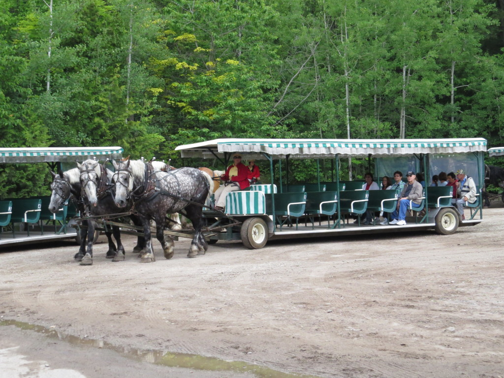 Horse ride on Mackinac Island