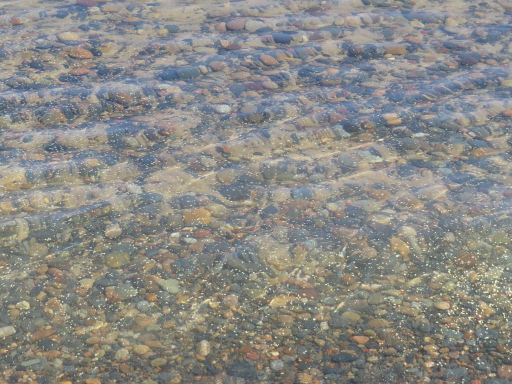 Whitefish Point