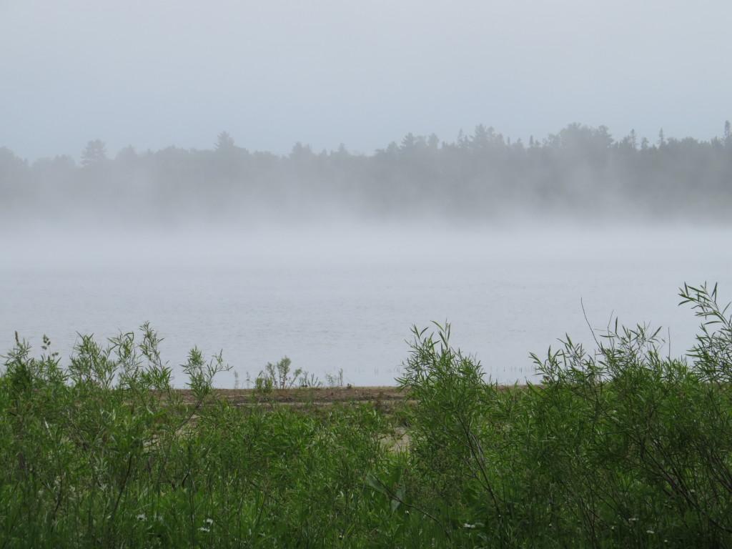 Fog in Michigan