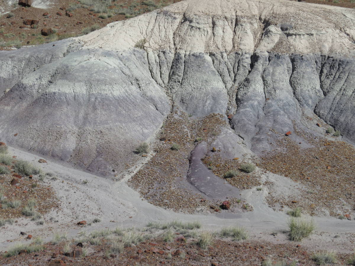National Park Service at 100: Petrified Forest National Park, Arizona