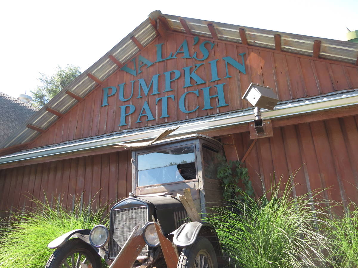 Vala's Pumpkin Patch offers fun for all ages