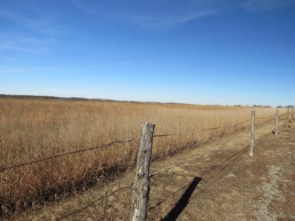 Nebraska Is Home To The Nation S First Homestead The