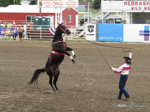 Horse Tricks at Wild West Show