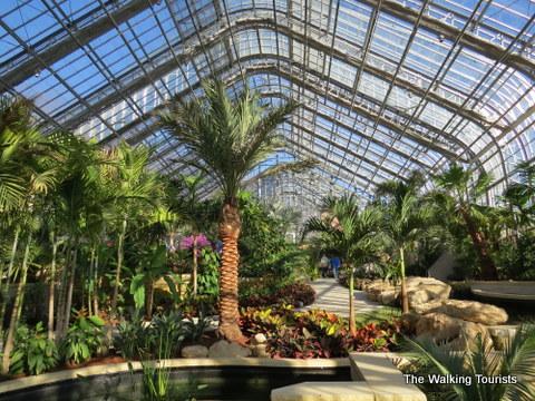 Tropical Zone In Conservatory At Lauritzen Gardens