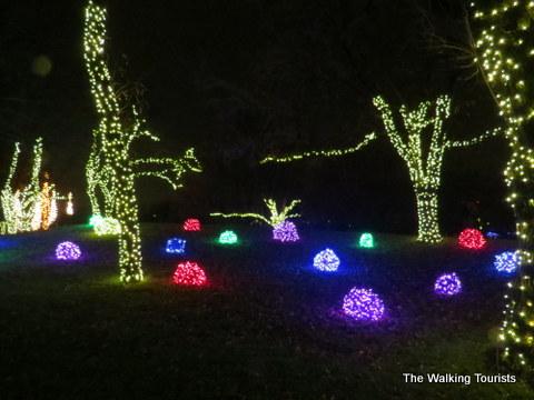 Santa at Illuminations Botanica