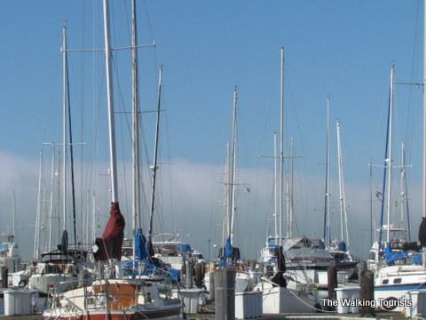 Marina near the pier in San Francisco