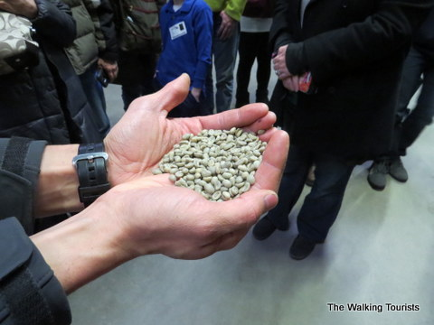 Green Beans before roasting at The Roasterie