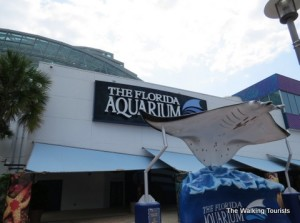 The Florida Aquarium looks at international ecosystems