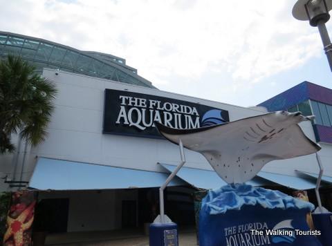 The Florida Aquarium looks at international ecosystems
