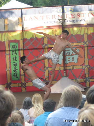 Amazing acrobatics at Missouri Botanical Gardens