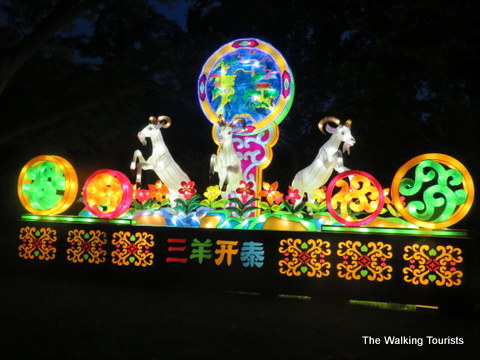 Goats lit up at Missouri Botanical Gardens