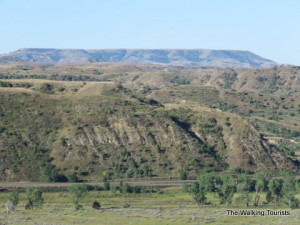 Bully! Theodore Roosevelt National Park a gem in North Dakota