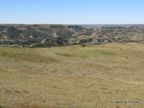 Theodore Roosevelt National Park