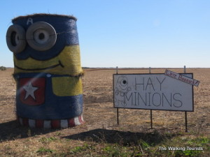 Trick-or-Treat: Nebraska's hay minions are back to save the day