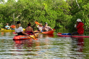 Kayaking in Fort Lauderdale with Atlantic Coast Kayak