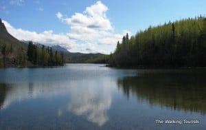 Vacation memories: Glacier, moose , good times top Anchorage visit