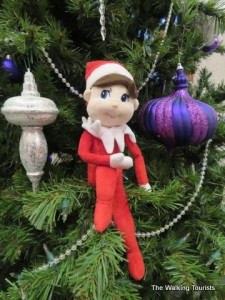 Elf: Helping the Trudells have a Happy Holiday