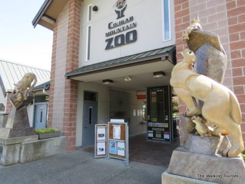 Cougar Mountain Zoo offers sanctuary for endangered animals