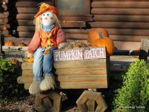 Bismarck's Papa's Pumpkin Patch rates among nation's best