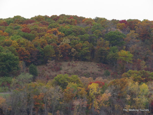 Dark fall colors along bluffs near the river in Stillwater