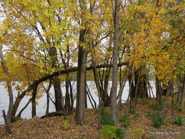 Taking in views on a trail along the St. Croix River in Stillwater.