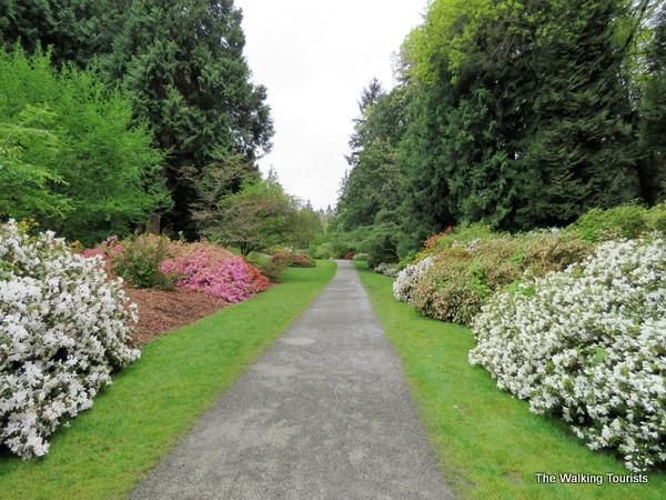 Garden on University of Washington in Seattle