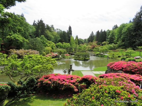 The garden's beauty is central to the pond.