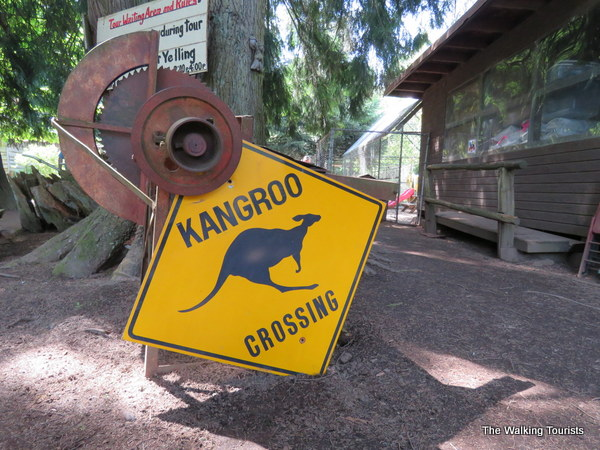 Where you can pet a kangaroo in Washington
