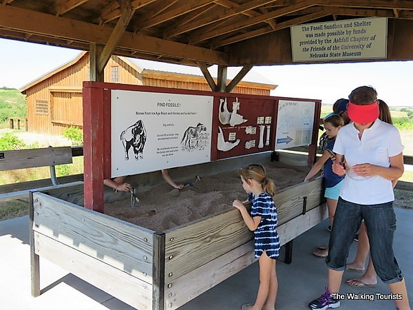 """Children play in a sandbox """"searching"""" for fossils."""