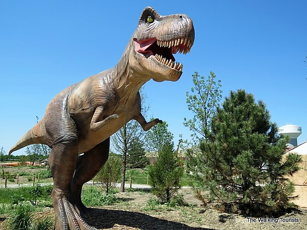 A T-rex at the dinosaur attraction in Derby.