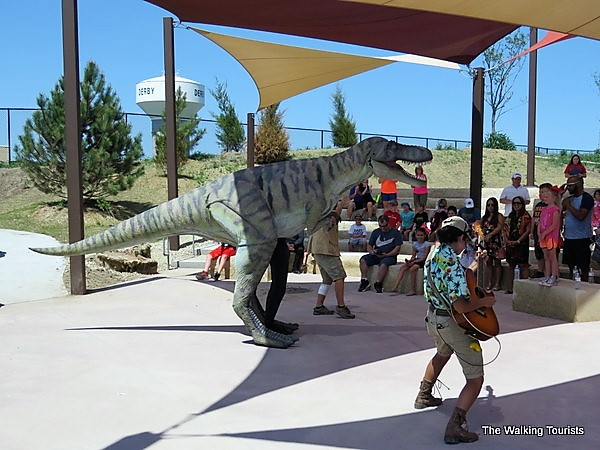 """""""Feeding Frenzy"""" is one of the shows produced daily for visitors."""