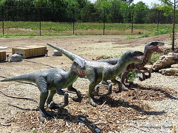 Three velociraptors standing side by side