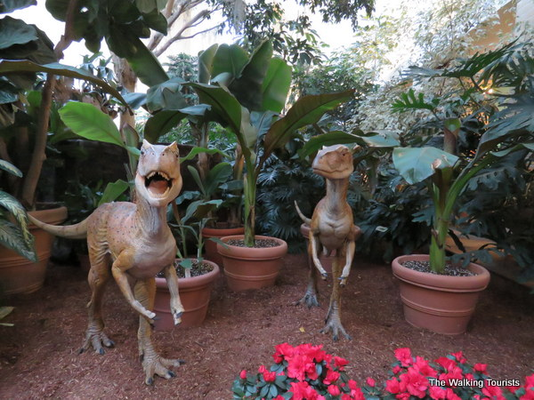 Two velociraptors stand guard during the exhibit.
