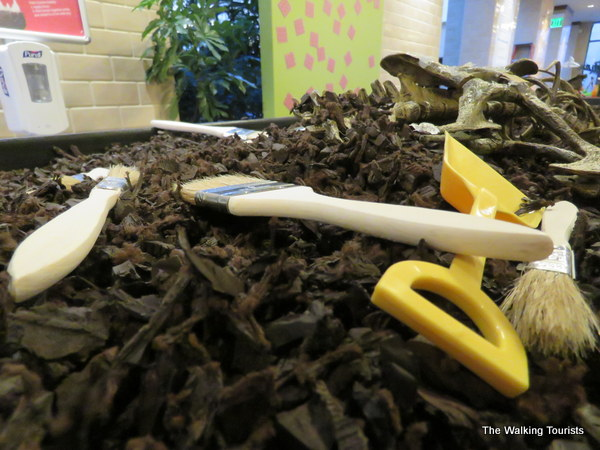 A dig station helps children search for fossils.