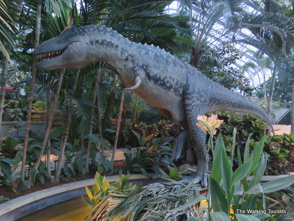 A 33-foot tall Daspletosaur greets visitors as they enter the tropical garden